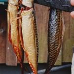 Kajs fisk och rökeri_3