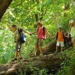 Barn på vandring i bokskogen i Axelstorps skogar utanför Båstad