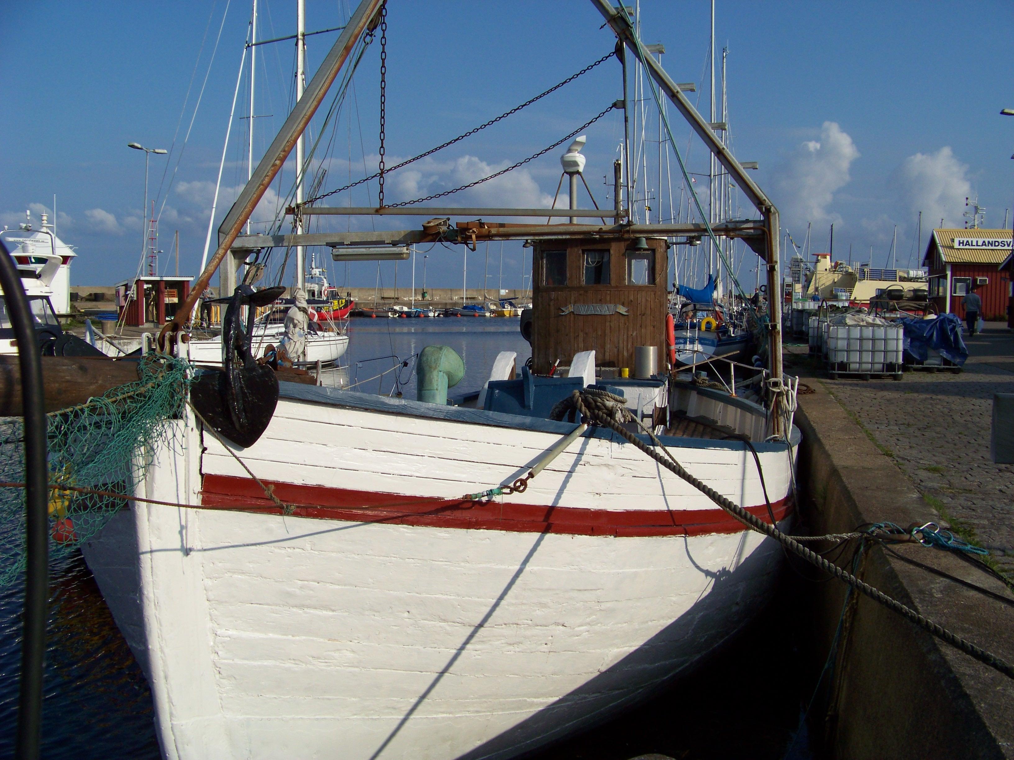 Fiskebåt i hamnen i Torekov